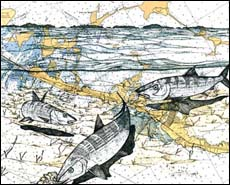 Bonefish Art - Bonefish Trio