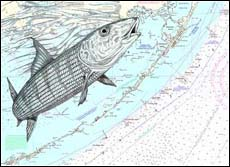 Bonefish Art - At the Surface
